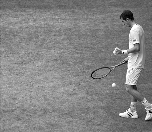 Andy Murray by Nick Webb