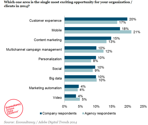 Econsultancy/ Adobe digital marketing trends 2014